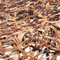 Rattan product at APY Cane