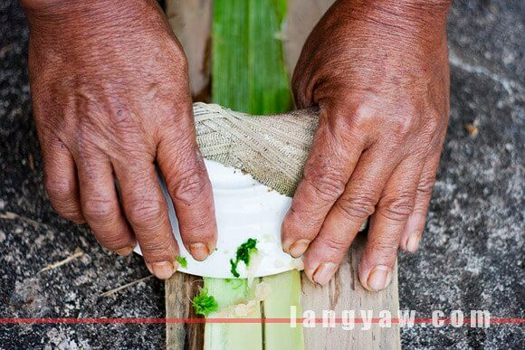 Pineapple leaf scraped with broken china to obtain the piña fiber. (Source:www.langyaw.com)