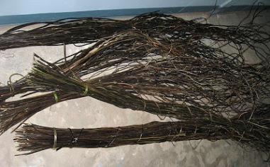 Nito fern stems (Source: www.marinduquegov.blogspot.com)