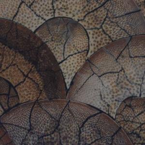 Bamboo CrackleLamination_Details