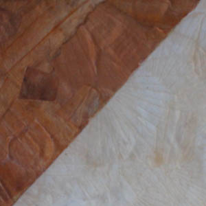 Onion & Garlic Peel Lamination_Details